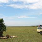 safari206.jpg