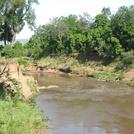 Kenya450.jpg