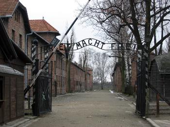 アウシュヴィッツ強制収容所の画像 p1_26