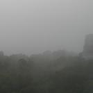 Tikal404.jpg