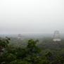 Tikal418.jpg