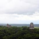 Tikal453.jpg