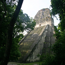 Tikal512.jpg