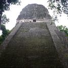 Tikal526.jpg
