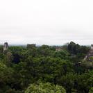 Tikal545.jpg