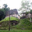 Tikal7017つの神殿の広場.jpg