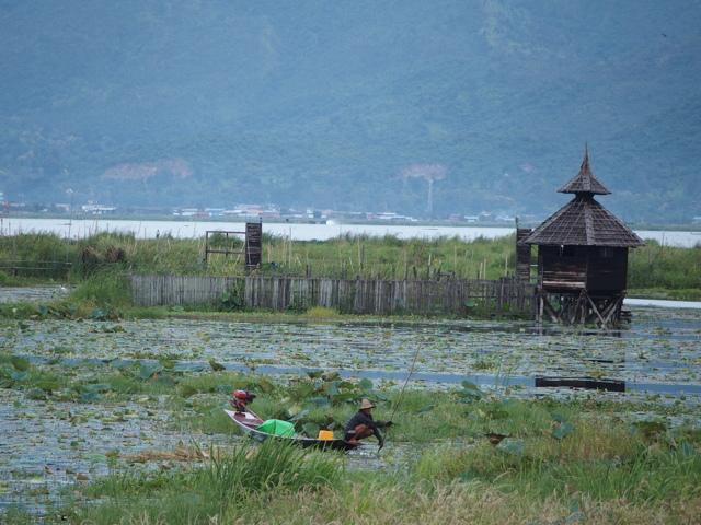 http://www.itonaika.com/column/images/K00206.jpg