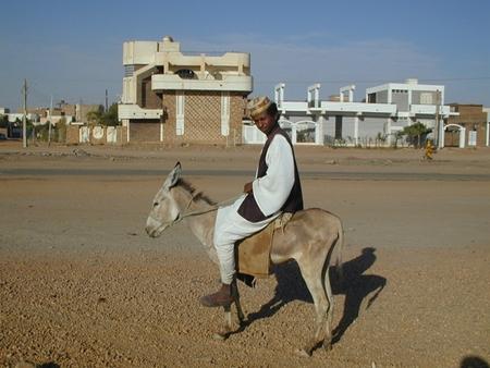 Sudan11_R.jpg