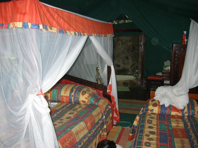http://www.itonaika.com/column/images/safari14.jpg