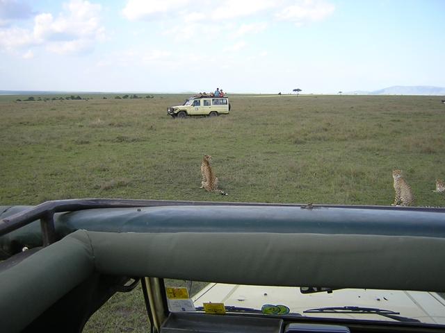 http://www.itonaika.com/column/images/safaricar2.jpg